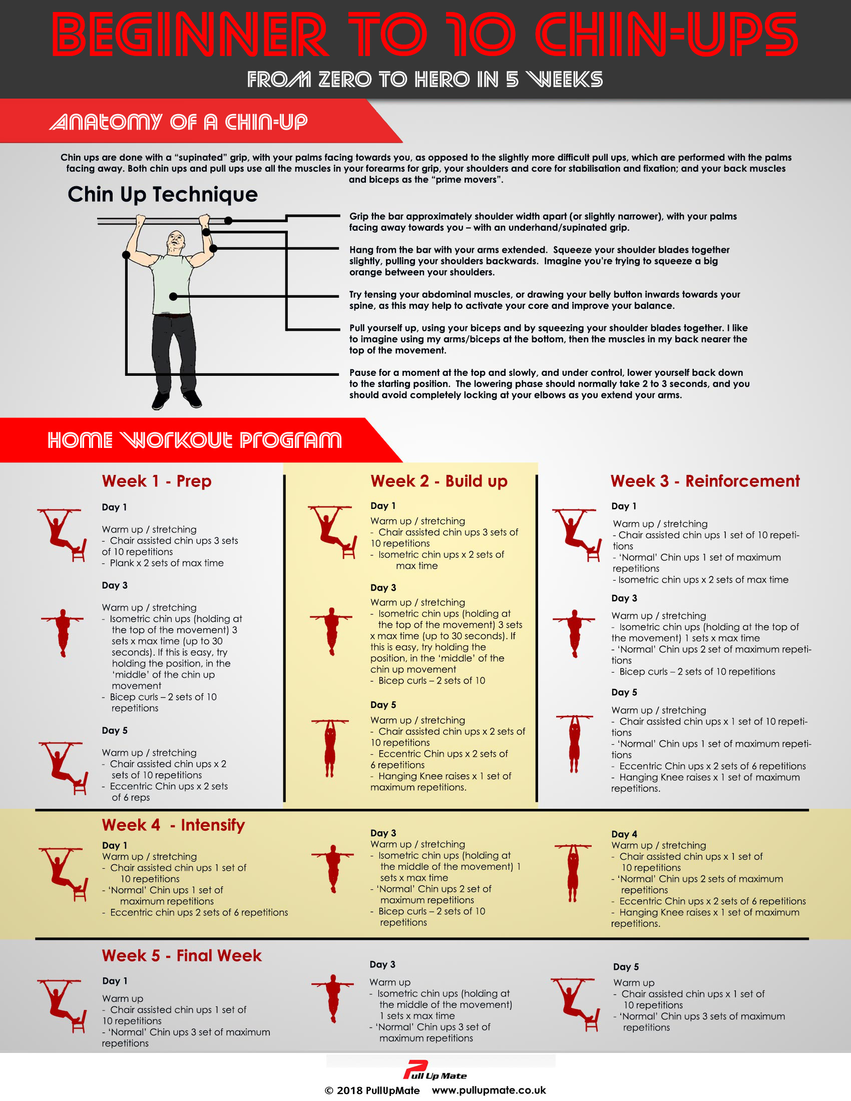 Chin Up Workout Infographic Fitness Tips Uk